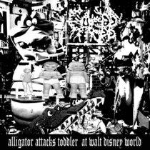 Alligator Attacks Toddler at Walt Disney World cover art