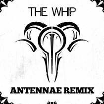 The Whip (An-Ten-Nae Remix) cover art