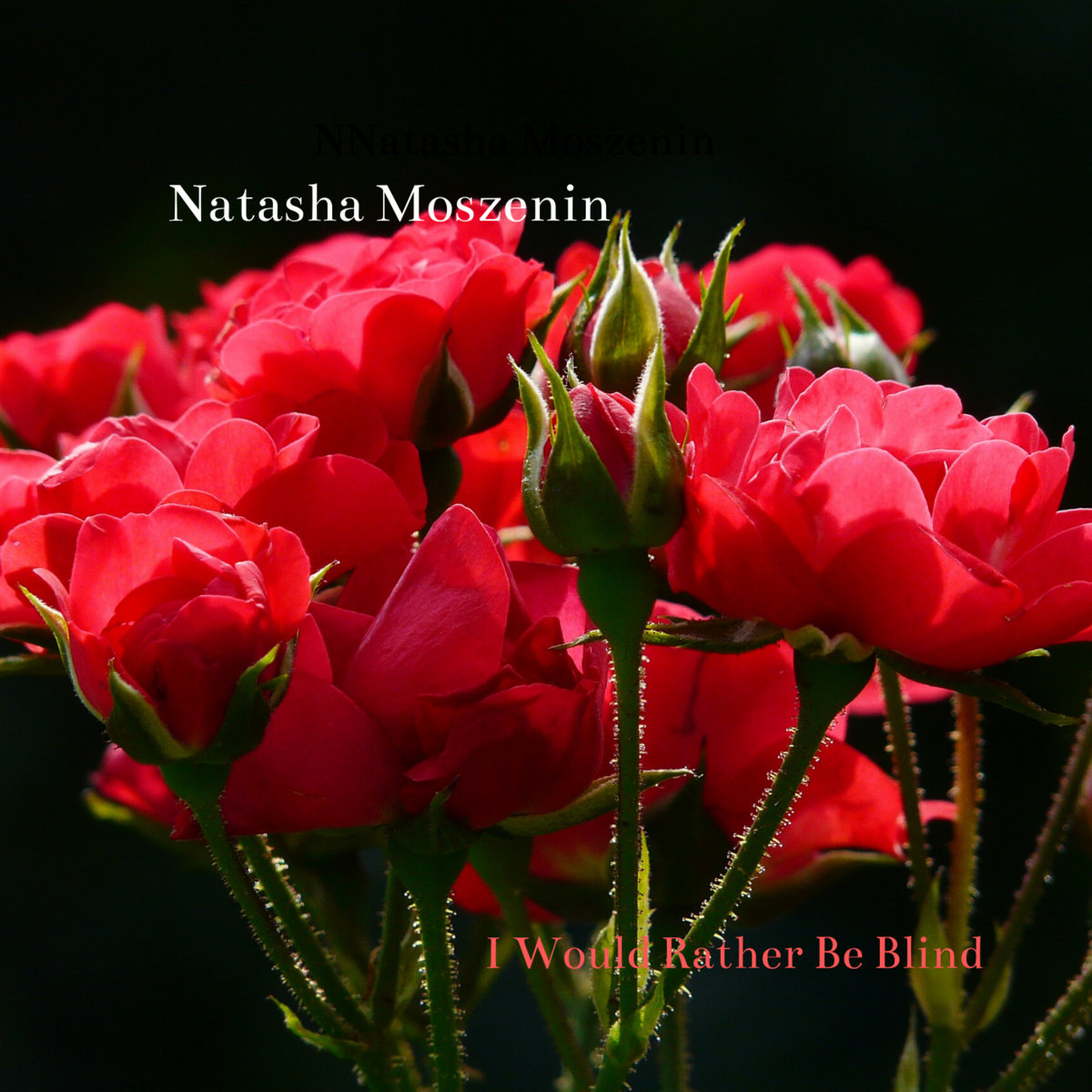 I Would Rather Be Blind by Natasha Moszenin