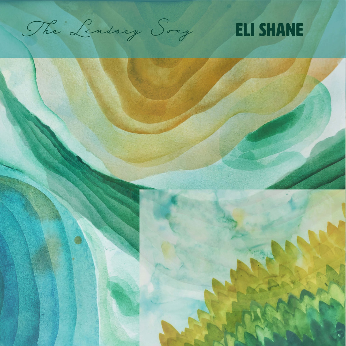 The Lindsey Song by Eli Shane