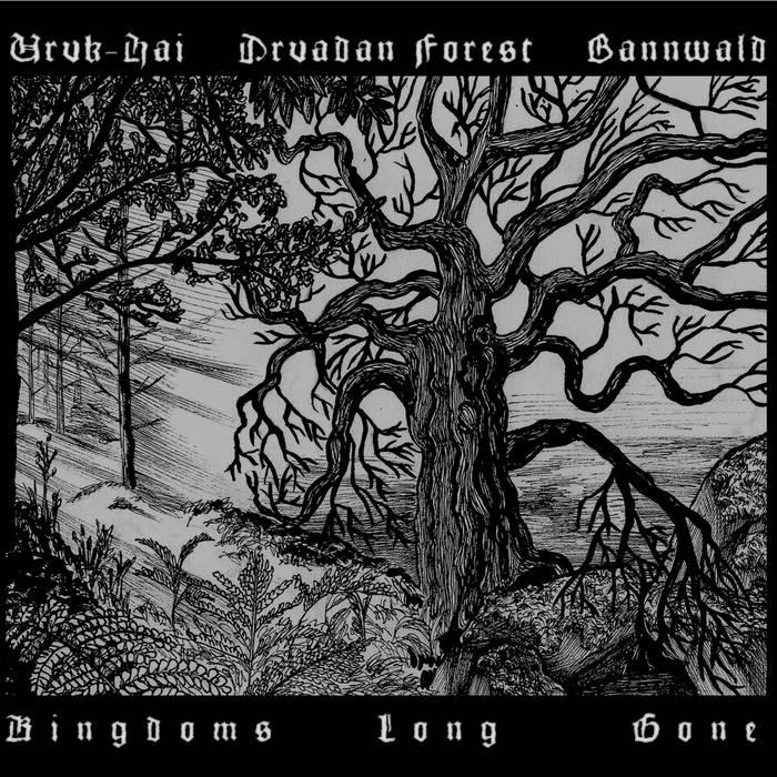 druadan forest bannwald uruk hai split album