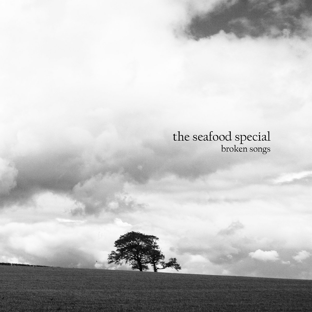 The Seafood Special - Broken Songs