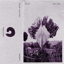 Furozh - Knew Idea cover art