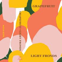 Light Fronds cover art