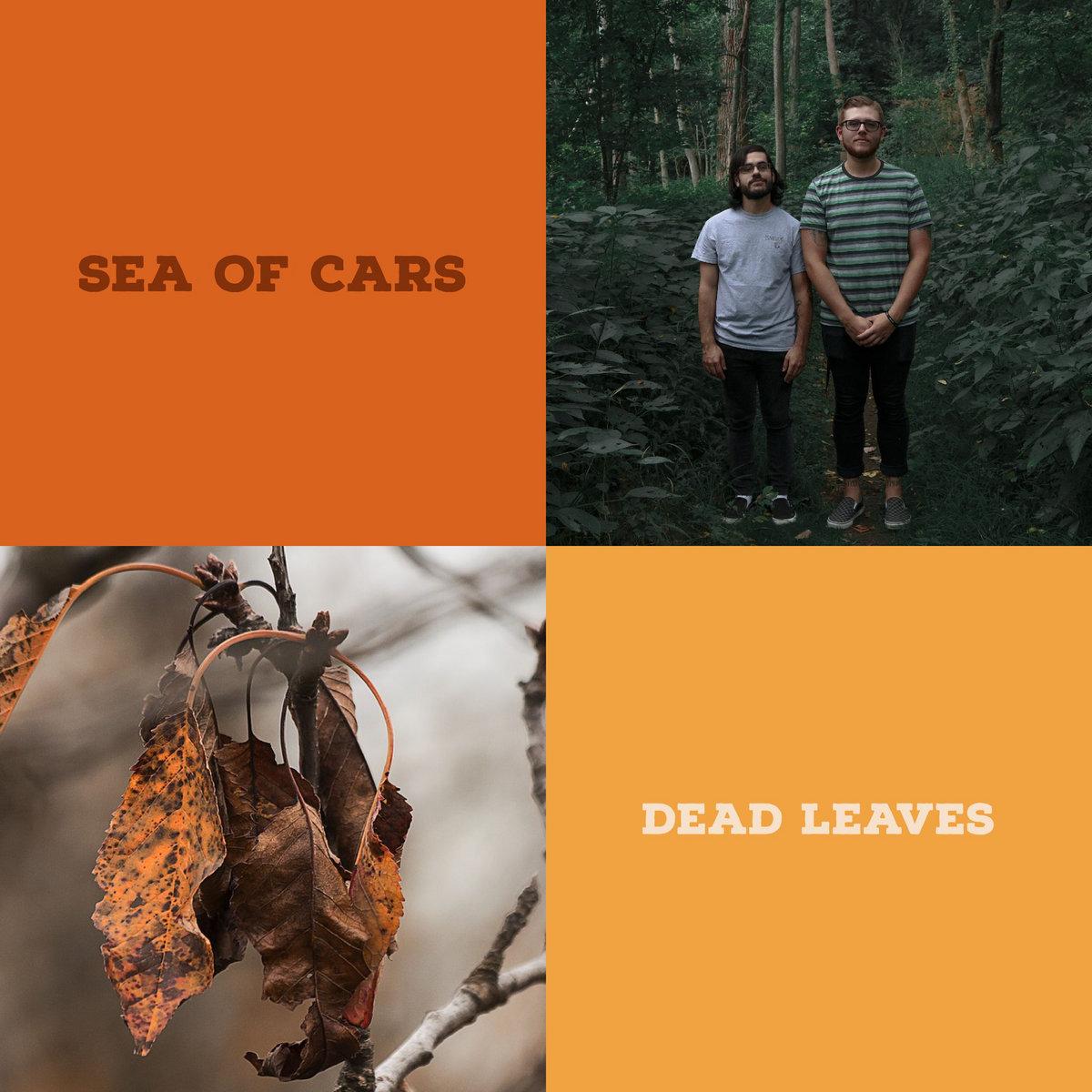 www.facebook.com/seaofcars82