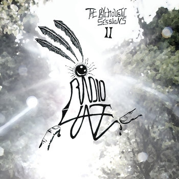 The Psychoustic Sessions II by Radio Haze