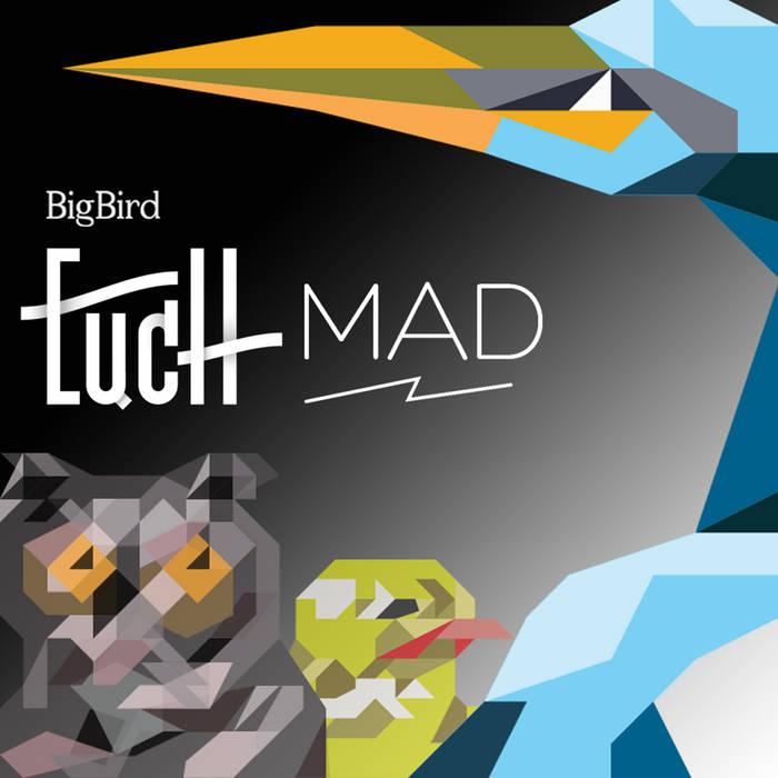 BigBird cover art