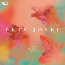 I Rise With The Birds cover art