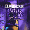 Luminous Dark Alleys: The Insomniac Works Cover Art