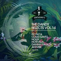 VA - The Dandy Selects Vol. 14 cover art