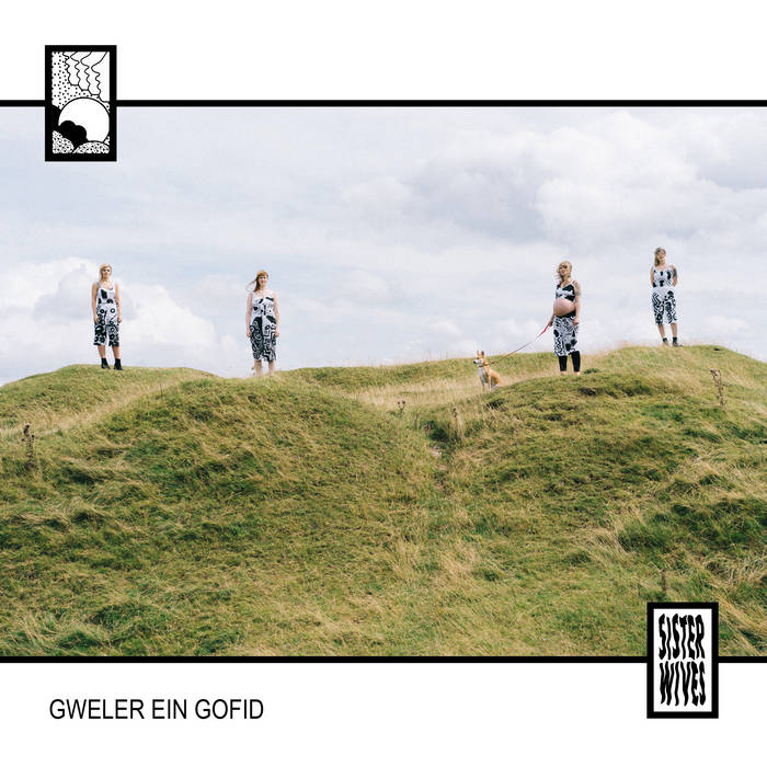 Cover art for Sister Wives Gweler Ein Gofid. A colour photograph with a black border on a white background. In the photo four women are stood on grassy mounds a few metres apart. All wear black and white patterned dresses. One is heavily pregnant, her stomach is exposed. She is holding the lead of a small dog.