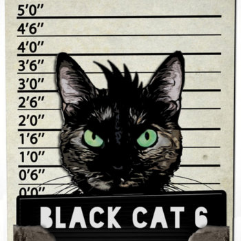 Felons by Black Cat 6