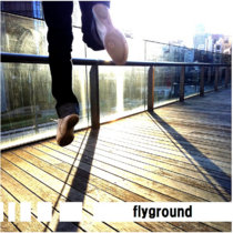 fly ground cover art