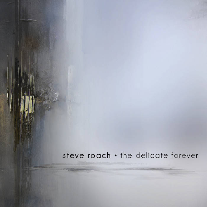 The Delicate Forever cover art