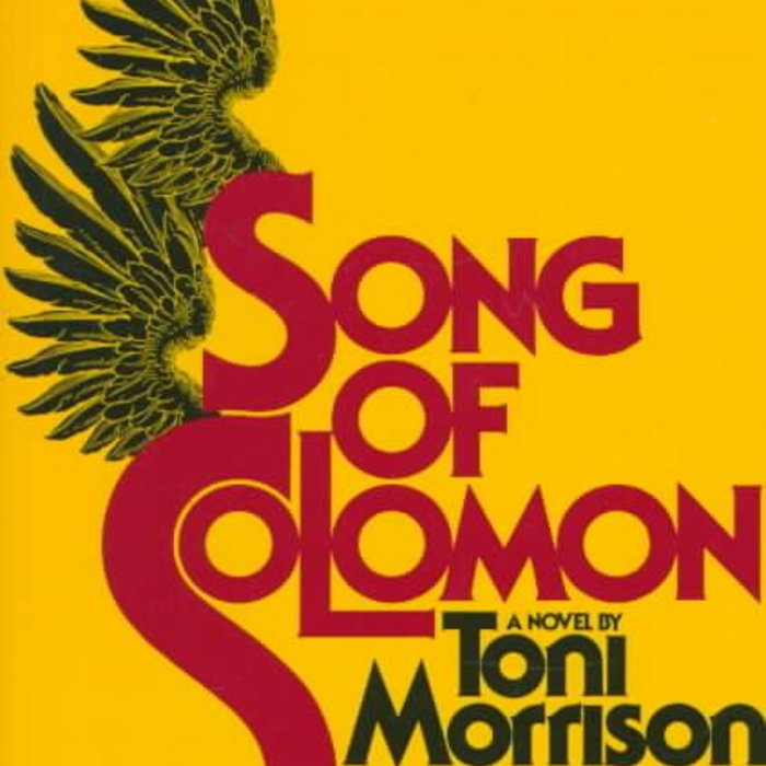 the search for identity in the song of solomon by toni morrison What term do you want to search song of solomon by toni morrison the rhythms of african american speech and song morrison has acknowledged that song of.