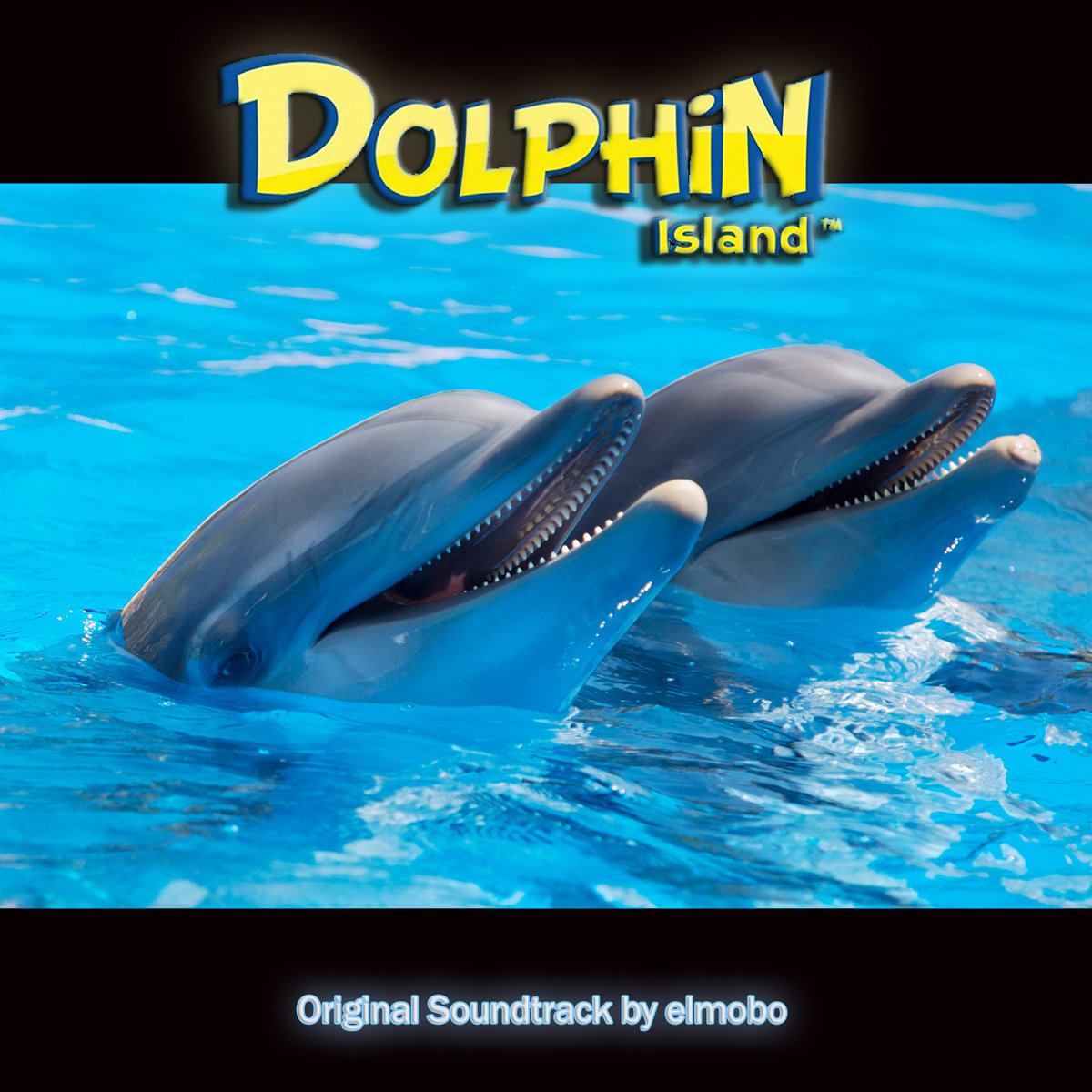 dolphin ds