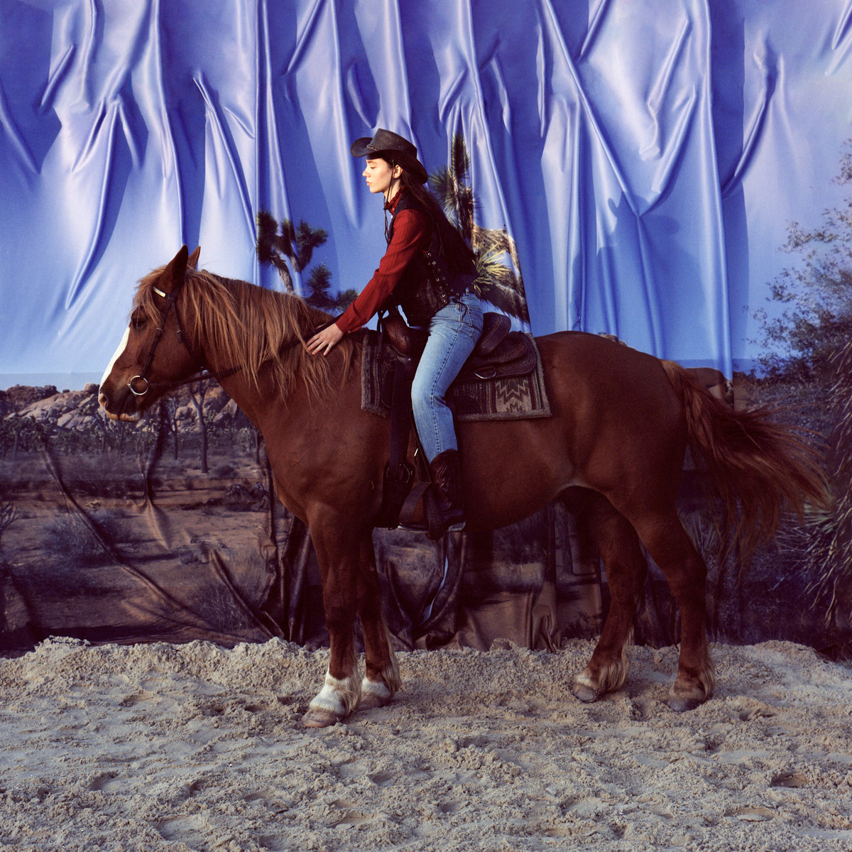 Horse | Holy Motors
