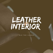 Leather Interior cover art
