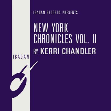 New York Chronicles Vol. II main photo
