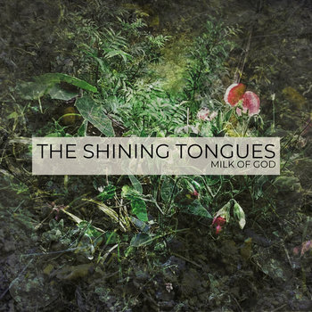 Buildings by The Shining Tongues