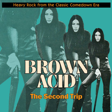 "Brown Acid ""The Second Trip"" main photo"