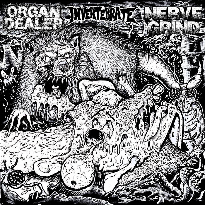Organ Dealer Invertebrate Nerve Grind Split Ep Organ