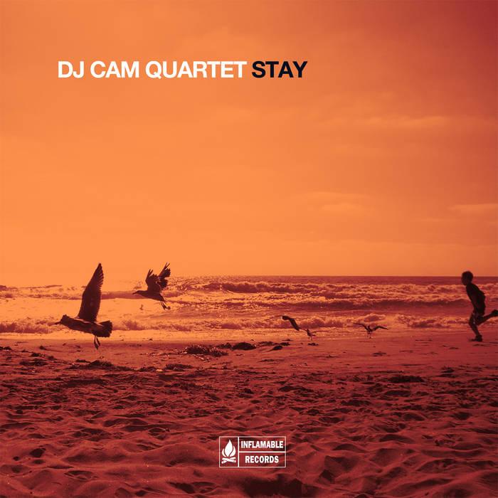 Diggin | dj cam & dj cam quartet.