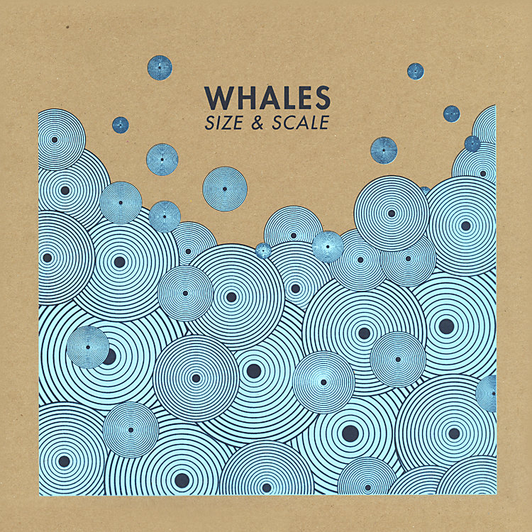 Swift-Tuttle | Whales