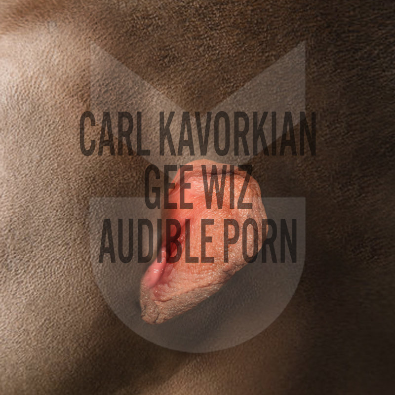 Audible Porn