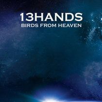 Birds From Heaven cover art
