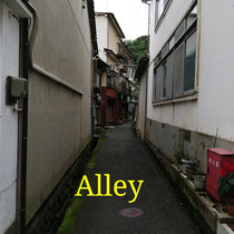 Alley cover art
