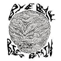 Bye Bye Big Brain / You're Pretty Sweaty For An Ant cover art