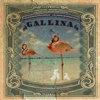 Gallina Cover Art