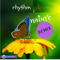 Rhythm of Nature (Remix version) cover art