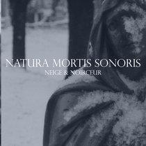 Natura Mortis Sonoris (Dusk014CD) cover art