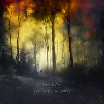 The Forgotten Places cover art