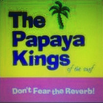 Don't Fear The Reverb - Papaya Kings cover art