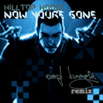 Hilltop Hoods - Now You're Gone (Sard Boogie Remix) cover art