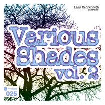 Lars Behrenroth presents Various Shades Vol.2 cover art