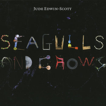 Seagulls and Crows by Jude Edwin-Scott