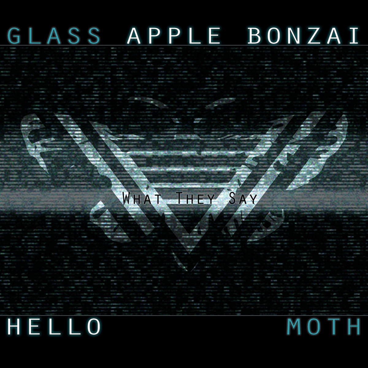What they say feat hello moth glass apple bonzai by glass apple bonzai thecheapjerseys Choice Image