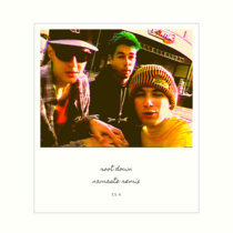 Beastie Boys - Root Down (Namaste Remix) cover art