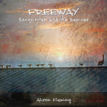 Freeway - Songwriter and the Remixes (Double album) by Alison Fleming
