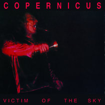 Victim Of The Sky cover art