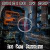 Ice Cold Sunshine Cover Art