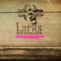 Larks cover art
