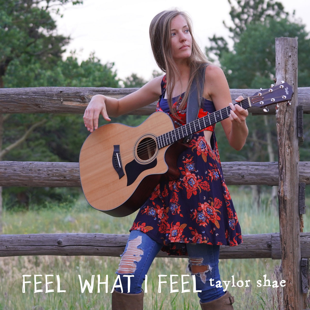 Feel What I Feel by Taylor Shae