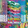 S.M. Wolf Cover Art