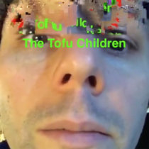 The Tofu Children cover art