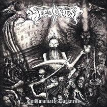 Consummate Darkness cover art